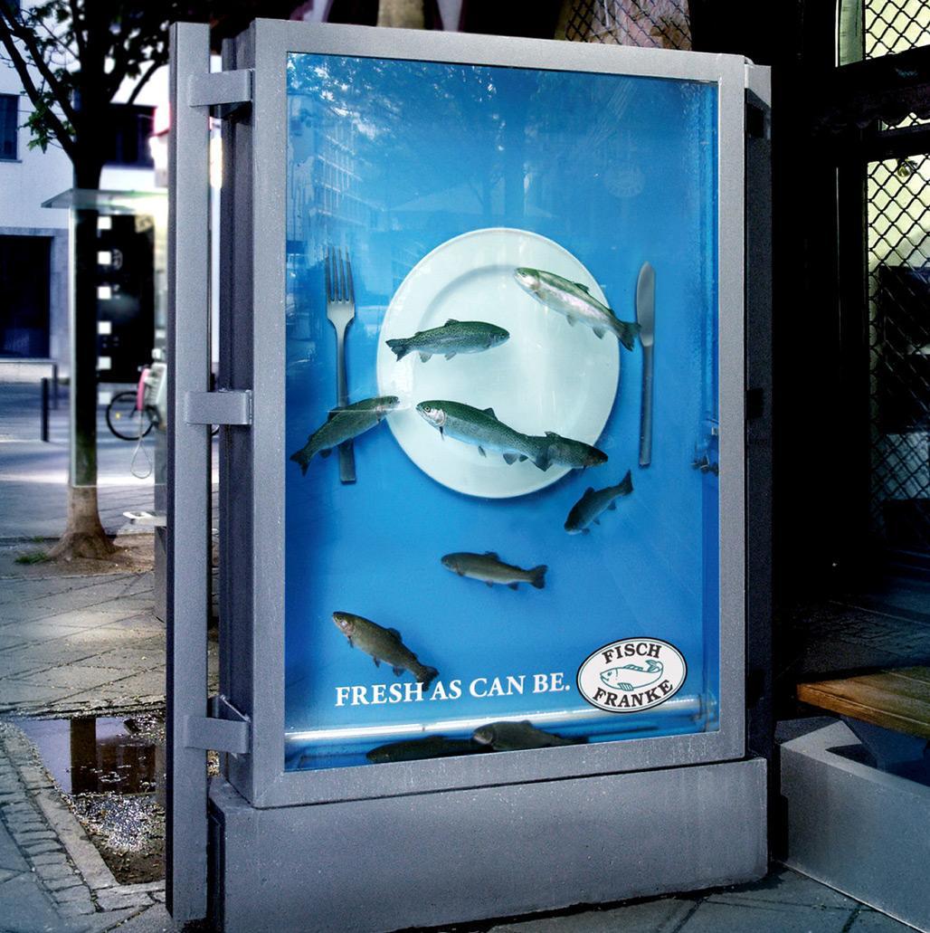 Fisch-Franke-Bus-Ad